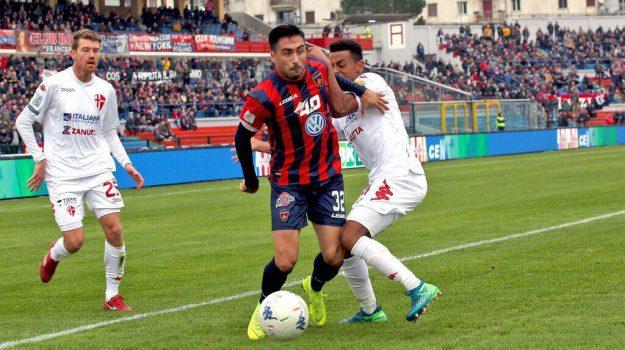 calcio cosenza, Cosenza Serie B, Cosenza, Calabria, Sport