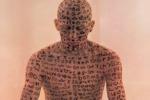 'Io sono una poesia', parole e arti
