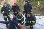 Tre cani finiscono in un canale a Conflenti, salvati dai vigili del fuoco - Foto