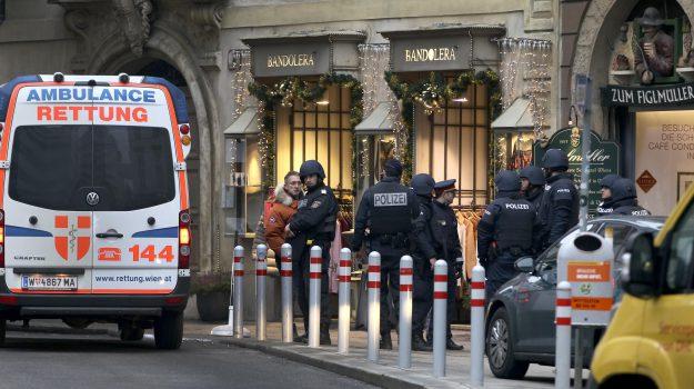 sparatoria vienna, terrorismo vienna, vienna, Sicilia, Mondo