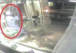 Il video di una telecamera di sicurezza a Engen