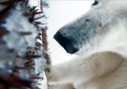 Il video girato nella provincia del Manitoba, Canada