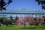 Undici avvisi di garanzia per la bimba morta all'ospedale di Lamezia
