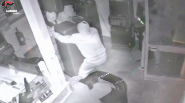 banda furti paola, furti distributori benzina, rapine con spaccata, Calabria, Cronaca