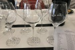 Vino: Amarone paga bene, le uve, il lavoro e i terreni