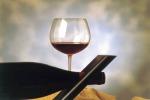 Doc dell'alto Piemonte, festa Città del Vino per i 50 anni