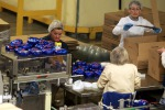 InvestUE: ok Parlamento Ue, mobilitare risorse per 700 miliardi