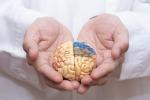 Nuove possibilità di cure per la demenza, arriva la terapia antineuroinfiammazione