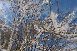 Nuova ondata di gelo nel week end in Sicilia e Calabria