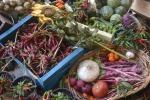 Svolta salutista dieta italiani, 9 mld kg ortofrutta in 2018