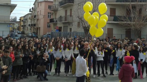 crosia, istituto comprensivo Mirto, mirto, Pietra di Inciampo, Maria Rita Calvosa, Cosenza, Calabria, Cultura