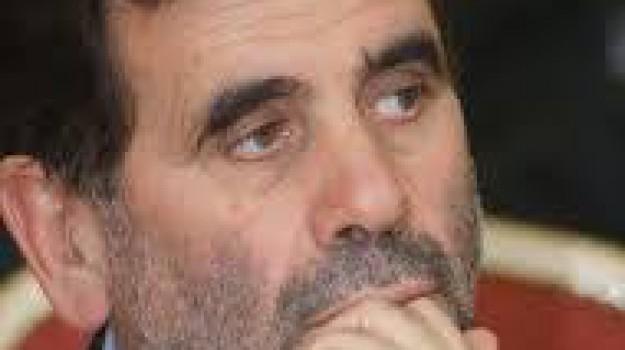 decreto sicurezza, pd calabrese, sindaci, Giovanni Puccio, Catanzaro, Calabria, Politica