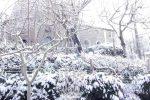 Arriva la neve nell'hinterland di Lamezia: paesaggi imbiancati e scuole chiuse, tutte le foto