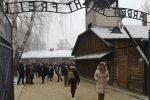 Studenti di Vibo in viaggio ad Auschwitz per ricordare la Shoah: le foto