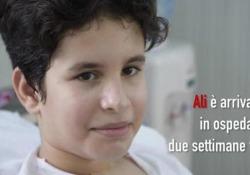 Allarme antibioticoresistenza in Medio Oriente e Iraq L'ong Medici Senza Frontiere: «Si rischia di non riuscire a curare le malattie infettive più comuni» - Corriere Tv