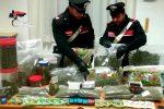 """Cannabis light """"fuori legge"""" in un negozio a Gioia Tauro, ai domiciliari un uomo di Lamezia"""