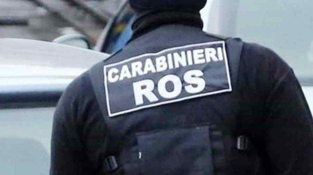 'ndrangheta, carabinieri ros, trento, Reggio, Calabria, Cronaca