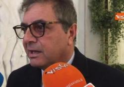 Xylella, Centinaio: «Decreto nelle prossime ore»