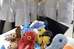 Il gruppo di ricerca dell'Università di Trento autore del censimento dei batteri del corpo umano (fonte: AlessioCoser per UniTrento)