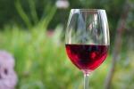"Torna ""Contrade"", protagonisti i vini dell'Etna"