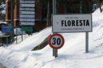 Floresta imbiancata e nella morsa del gelo