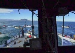 """Abbordata la nave di Sea Shepherd: la guerra per la """"cocaina acquatica"""""""