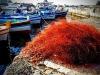 Pesca: ok dalla Commissione del Parlamento Ue al piano per il Mediterraneo (fonte: Wikipedia)