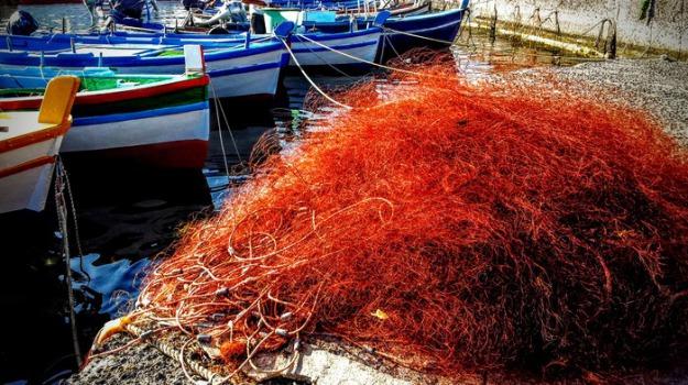 coldiretti, pesca, Calabria, Economia