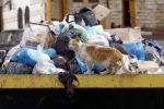 """Reggio """"soffoca"""" tra i rifiuti, il sindaco firma provvedimenti straordinari"""