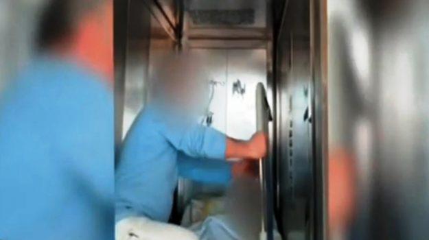 ospedale locri striscia la notizia, Reggio, Calabria, Cronaca
