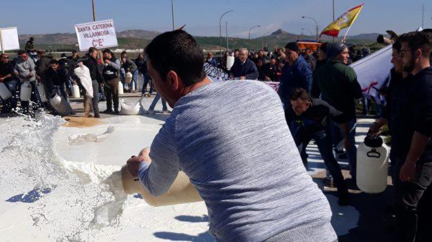 aziende latte chiuse ragusa, costo latte, crisi latte sicilia, protesta allevatori latte, Sicilia, Economia