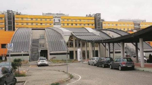 calabria, ospedale pugliese-ciaccio, sanità, Catanzaro, Calabria, Cronaca