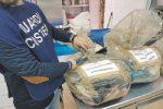 Reggio, sequestrati 6 quintali di pesce: multe della Guardia costiera
