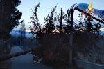Maltempo a Sorbo San Basile, alberi abbattuti dal vento tranciano i cavi elettrici