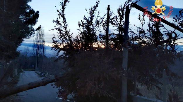 maltempo sorbo san basile, vento calabria, Catanzaro, Calabria, Cronaca