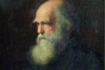 Ritratto di Charles Darwin dipinto da Walter William Ouless nel 1875 (fonte: Wikipedia)
