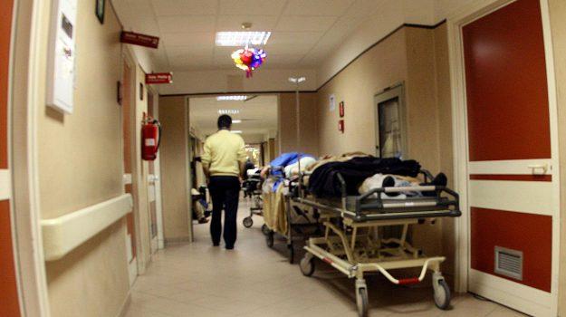 codice verde, denuncia codacons, donna morta ospedale cosenza, Cosenza, Calabria, Cronaca