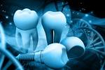 Un gene regola la formazione delle radici dei denti