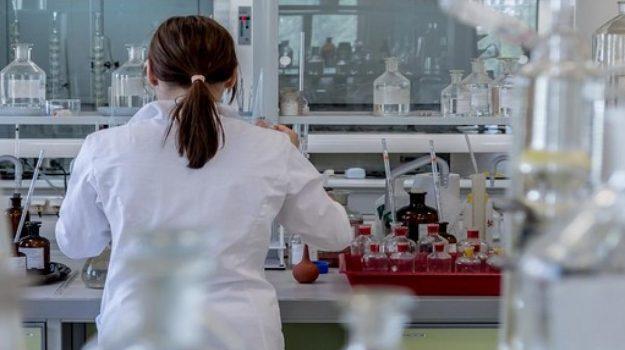 mail biologa pordenone, mail ficarazzi, Erminia Muscolino, Sicilia, Cronaca