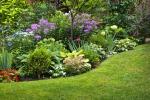 Giardini terapeutici per depressione, autismo e Alzheimer
