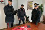 Cocaina e pistola nascoste nel ripostiglio, pusher arrestato a Montalto Uffugo