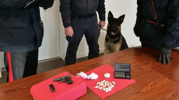 arresto montalto uffugo, cocaina montalto uffugo, Cosenza, Calabria, Cronaca
