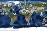 Rappresentazione grafica di tutti i radiotelescopi coinvolti nelle osservazioni (fonte: Paul Boven)