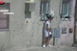 Spaccio a Cortale, ecco come veniva nascosta la droga in strada - Video