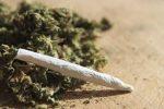 Droga, tre arresti a Corigliano Rossano per marijuana