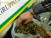 In viaggio con 30 chili di marijuana in macchina: corriere della droga arrestato a Messina