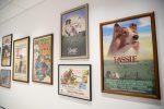 Apre a New York un museo dedicato interamente ai cani