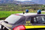 Danno erariale, sequestro da 1,5 milioni per un dirigente dell'Azienda forestale della Calabria