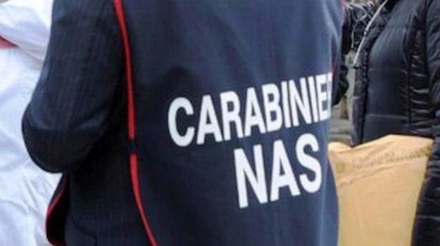 carabinieri, catanzaro, Catanzaro, Calabria, Cronaca