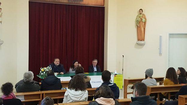 azione cattolica, festa della pace, messina, Francesco Pira, Lucio D'Amico, Messina, Sicilia, Società